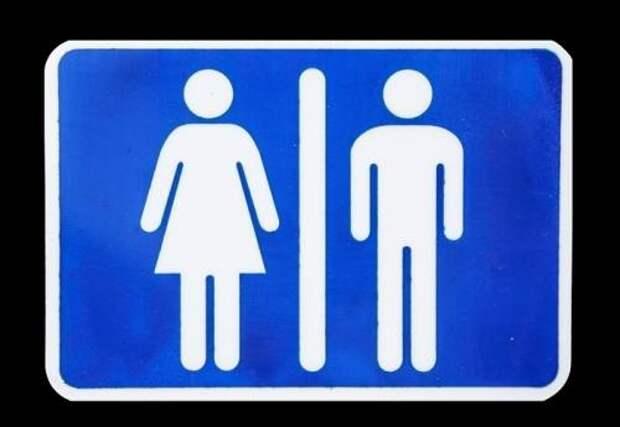Мэр Краснодара остался недоволен бесплатными туалетами