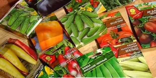 Обозначения на упаковках семян.  Что они означают?