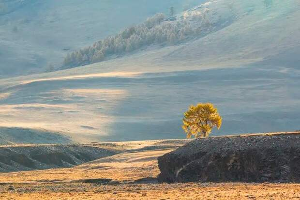 Долина реки Юстыд