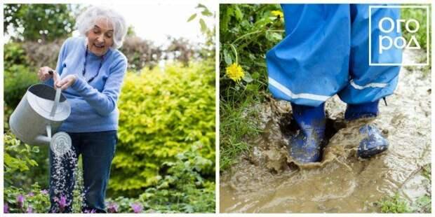 избыточный полив грядок в огороде