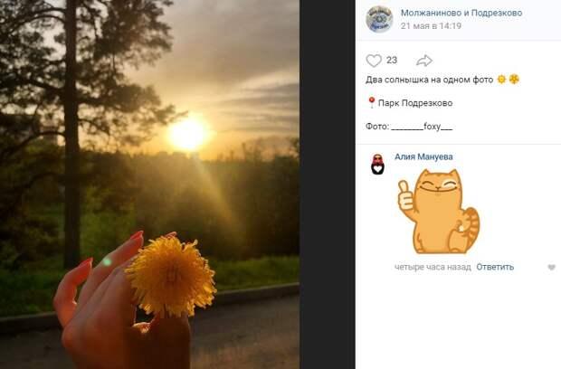 Фото дня: в парке «Подрезково» поймали два «солнца»