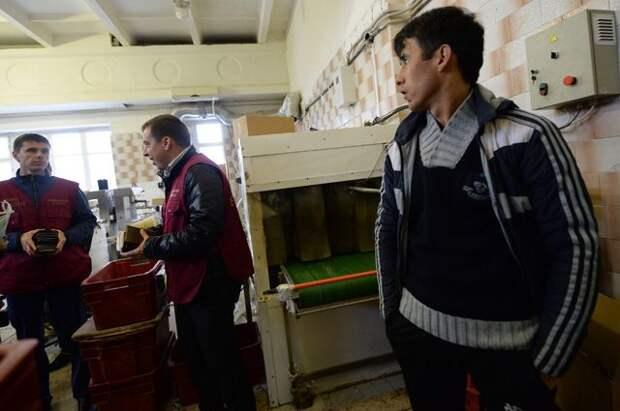Мигранты, по домам. Какие границы и для кого нужно закрыть России?