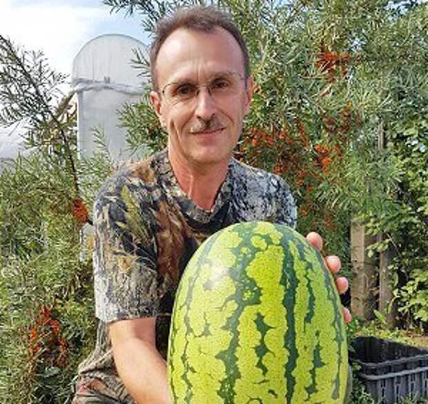 Вадим Кононов