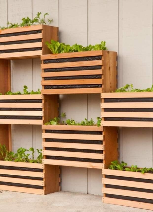 Экономия пространства при недостатке площади, освобождает подоконники и другие горизонтальные поверхности от зеленых насаждений.