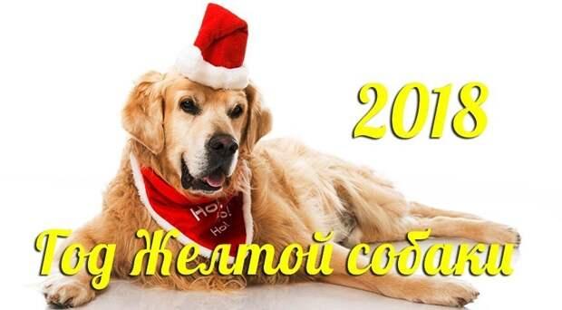 Подробный гороскоп на 2018 год для всех знаков зодиака!