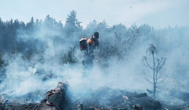 84 свердловских пожарных тушат леса в Тюменской области