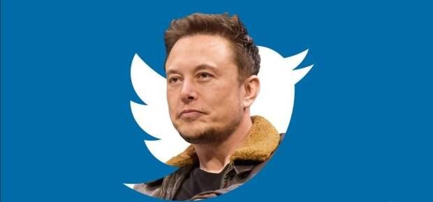 Готов ли Илон Маск защитить свободу слова в США