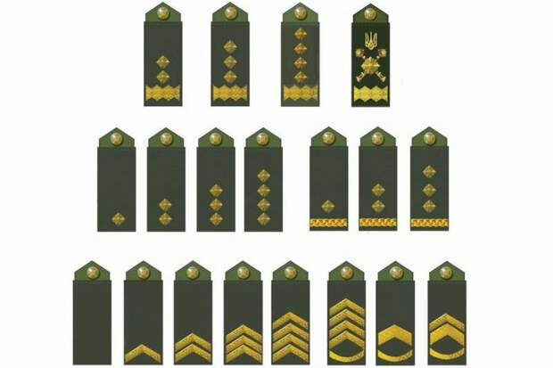 В Госпогранслужбе Украины вводят новые звания по стандартам НАТО