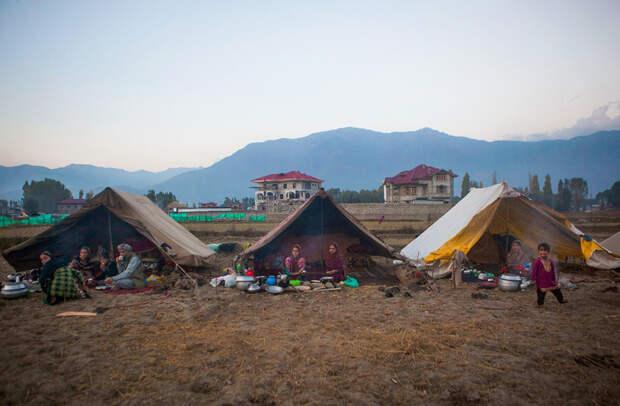 Жизнь между двух огней. Как живут кочевники Кашмира