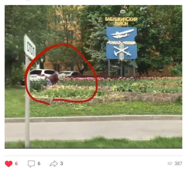 Фото дня: женщина сорвала тюльпаны с клумбы в Бабушкинском