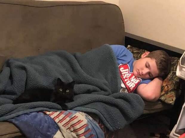 Мальчик привязался к приютской кошке! Тогда мама сделала ему самый милый подарок в мире…