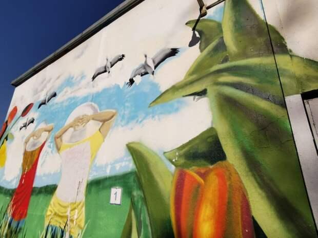 Фото дня: птицы никогда не покинут Марьину Рощу