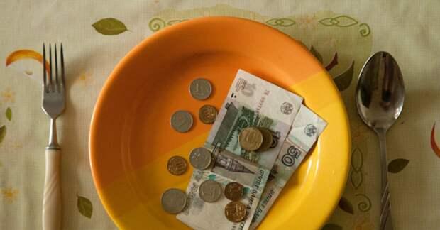 Россияне начали больше обращаться в быстрозаймы из-за того, что не хватает денег на еду
