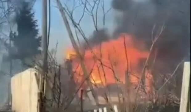 «Бабуля жгла траву»: несколько дач выгорело вПриморье из-за пала