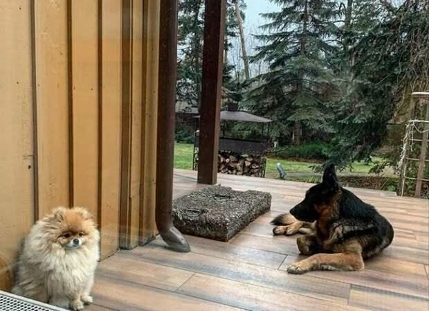 Как Олег Газманов обустроил свой дом-корабль в Подмосковье, поместье в Италии и квартиру в Латвии