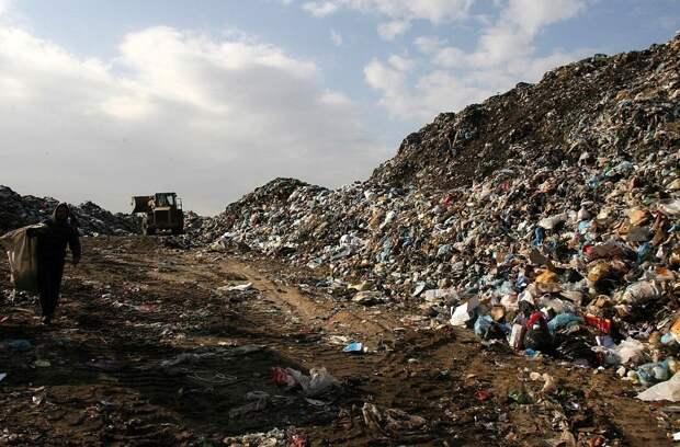 Сатановский: поговорим о мусоре. Давно не говорили