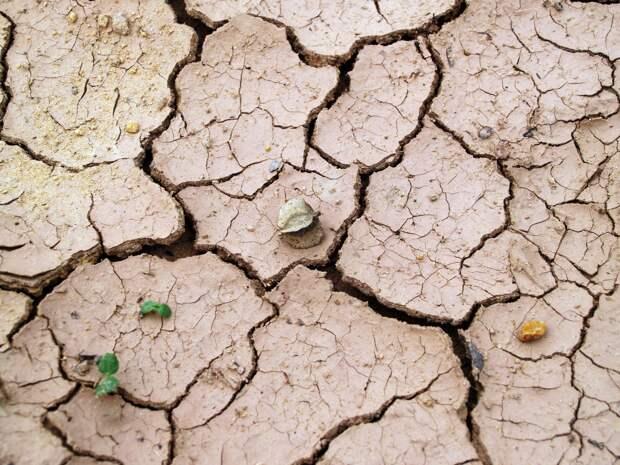 Через год в Крым может прийти более сильная засуха