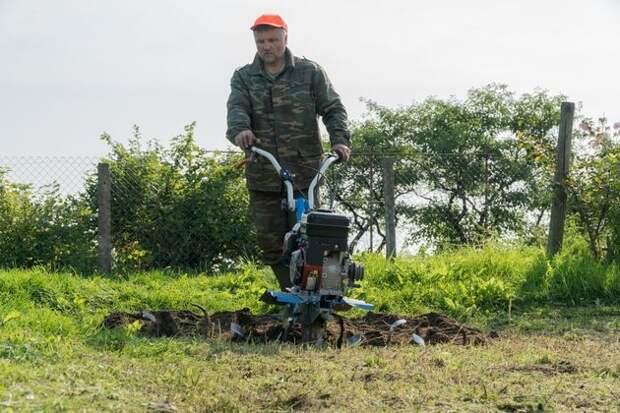 Андрей Туманов об удобрениях и улучшении плодородия почвы
