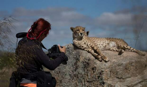 Новые снимки работы фотографов с животным миром.