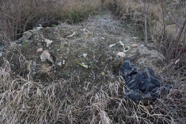 Братскую могилу осквернили под Симферополем