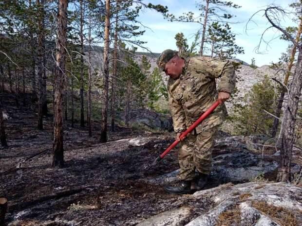 Участок леса сгорел в Ольхонском районе на территории нацпарка