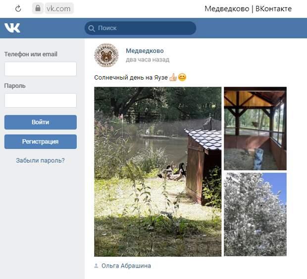 Москвичка сфотографировала пернатых обитателей на Яузе