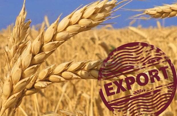 Фермеры из ЕС рискуют отдать России свою долю на мировом рынке