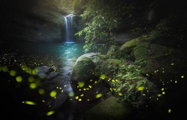 Неземные красоты нашей планеты на снимках победителей Международного конкурса «Пейзажный фотограф года»