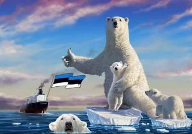 Эстония заявила о наличии интересов страны в Арктике