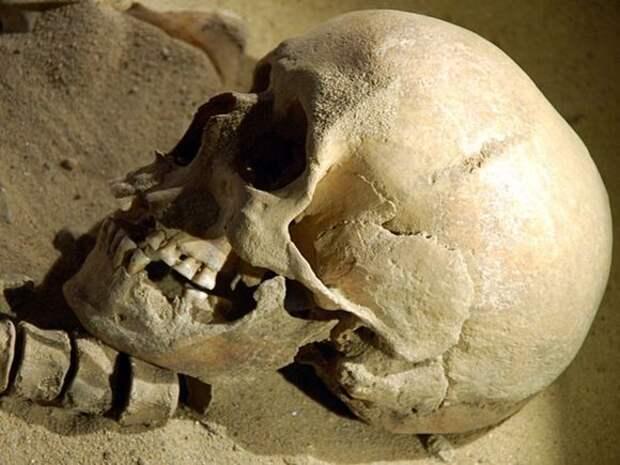 На пустыре в Петербурге женщина нашла скелет в обгоревшей одежде