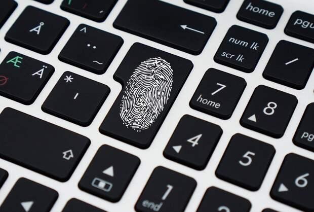 Сервис по наблюдению за регистрацией на онлайн-голосование запустили в Москве