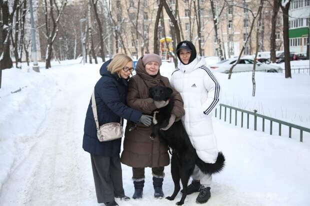 Жители Ростокина спасли брошенного пса