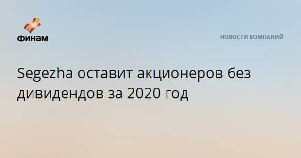 Segezha оставит акционеров без дивидендов за 2020 год