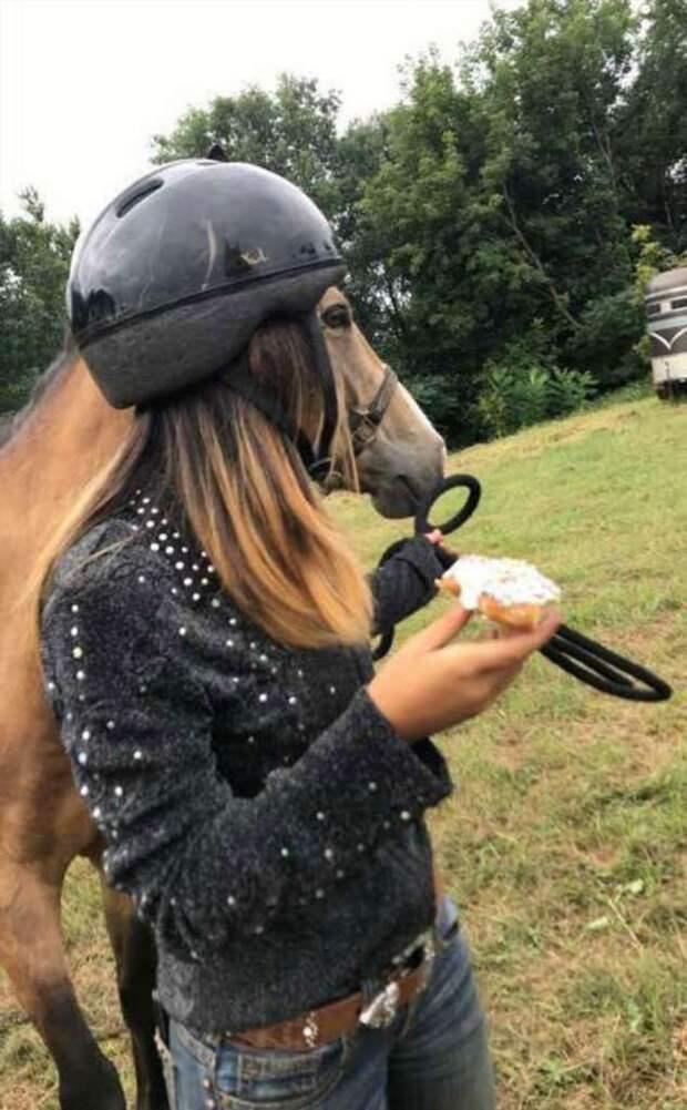 Самые забавные новые фотографии животных с просторов Интернета