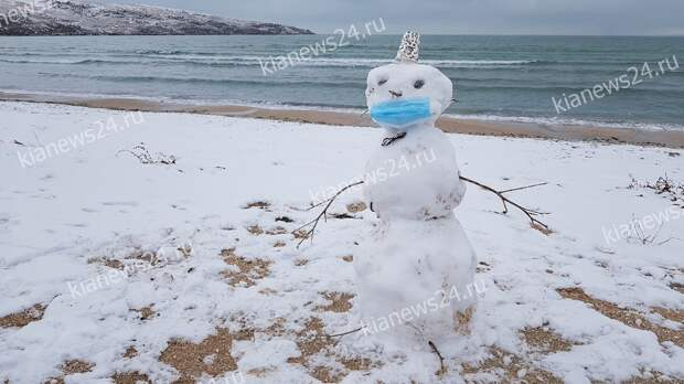 В Крыму заметили  соблюдающего масочный режим снеговика