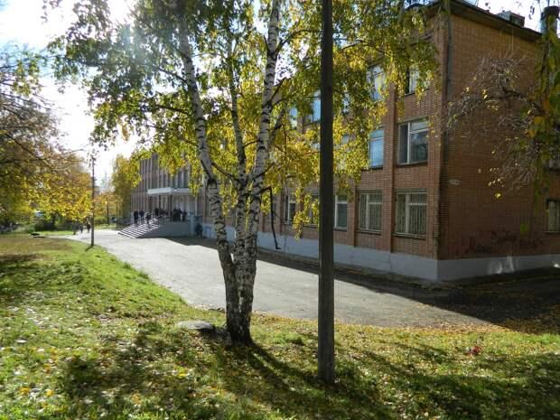 Объединенный пешеходный переход и светофор с кнопкой появятся у школы №68 в Ижевске