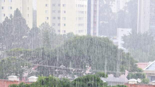 После дождя в Калининградской области затопило целый поселок
