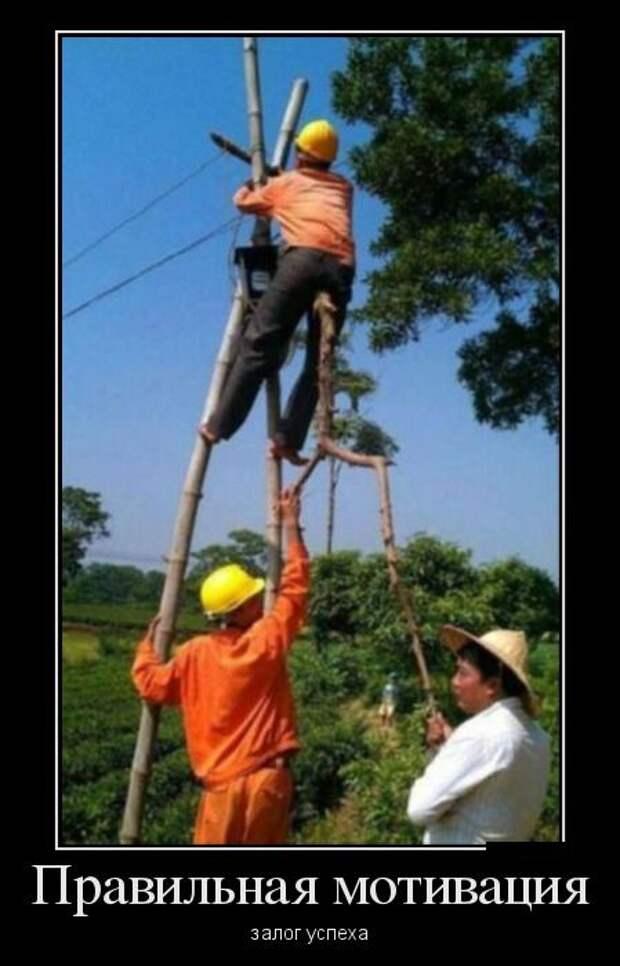 Смешные демотиваторы на понедельник (10 фото)