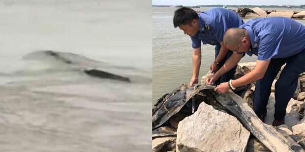 Жителей Китая напугал «водяной монстр»