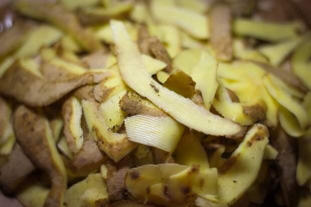 Что делать с картофельными очистками