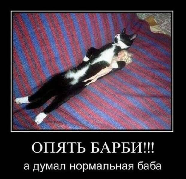 Подборка веселых демотиваторов про животных (12 фото)