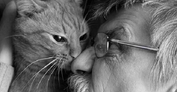 Кошка, которую местные жители нежно называли Дымкой, отплатила добром за добро