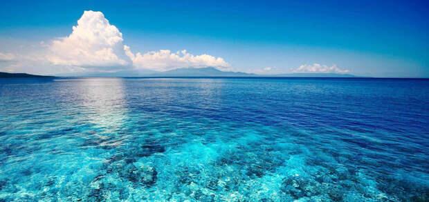 Немецкие ученые предупредили о снижении уровня кислорода в водах Мирового океана
