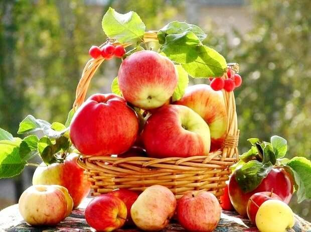 Необычное применение яблок в быту