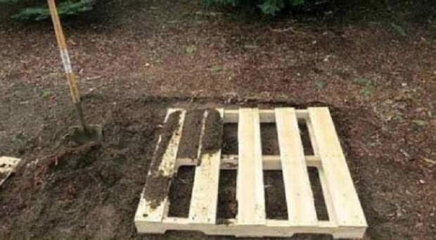 Все думали, зачем соседу столько деревянных поддонов. Но когда увидели, что он из них делает, открыли рты
