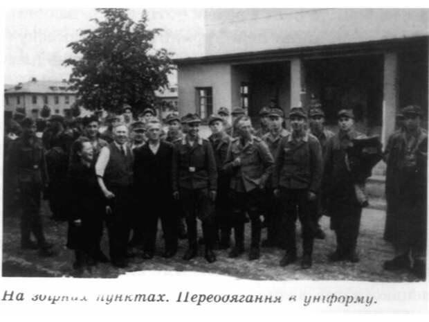 Украинские помощники люфтваффе и ПВО