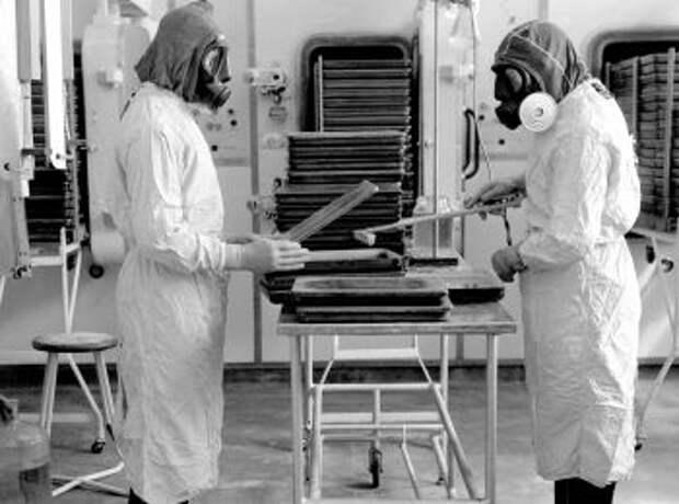 Эпидемия сибирской язвы в СССР: что случилось в 1979 году