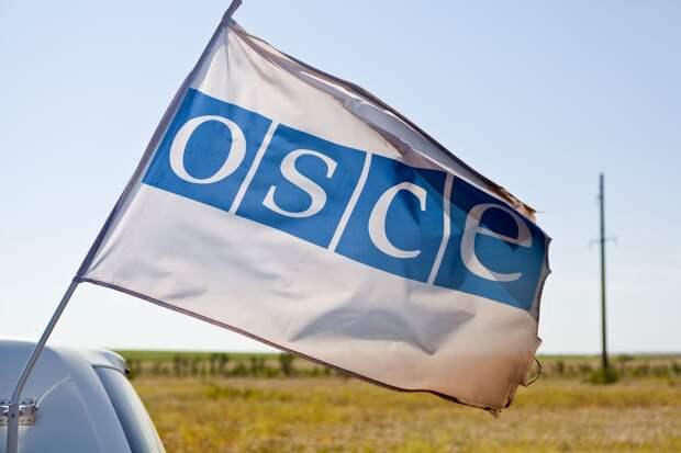 Председатель ОБСЕ выразил обеспокоенность героизацией Бандеры на Украине