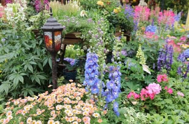 10 вещей, которые вам никто не расскажет о первом садово-огородном участке