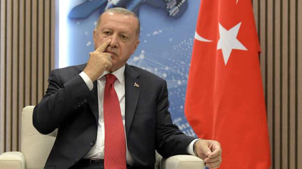 Шаткая экономика Турции дестабилизирует авторитарное президентство Эрдогана